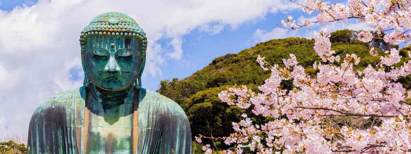 The best places to see cherry blossom in Japan (Shutterstock)