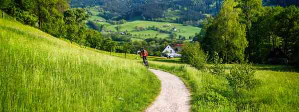 Tips for cycling in the Black Forest (Shutterstock)