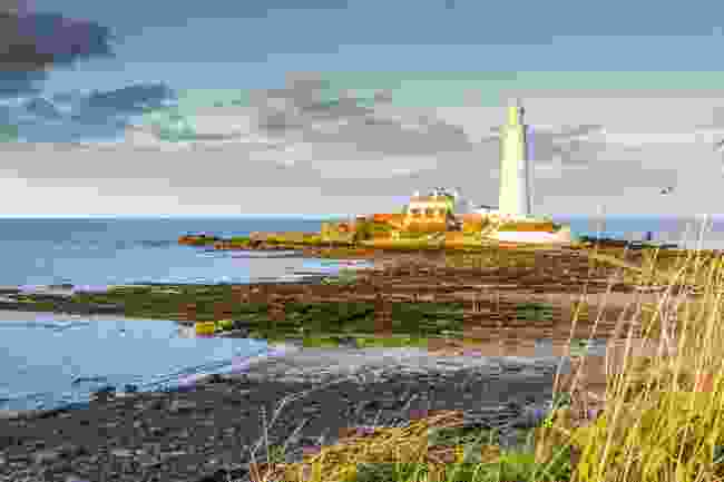 St Mary's Lighthouse, Whitley Bay (Shutterstock)