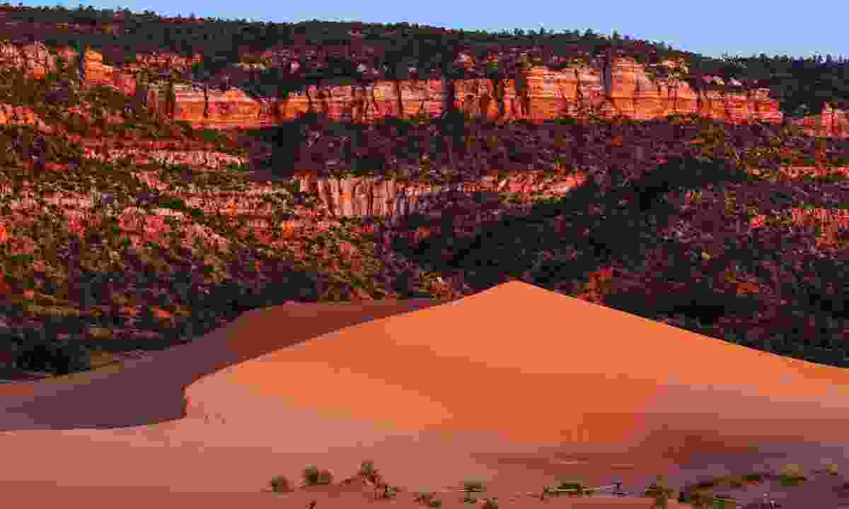 Coral Pink Sand Dunes State Park is best known for its salmon-pink dunes (KCOT)