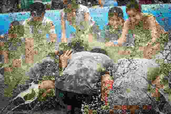 Boryeong Mud Festival, South Korea (Korea Tourism Organization)