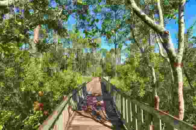 Tibet-Butler Nature Preserve, Florida (Shutterstock)
