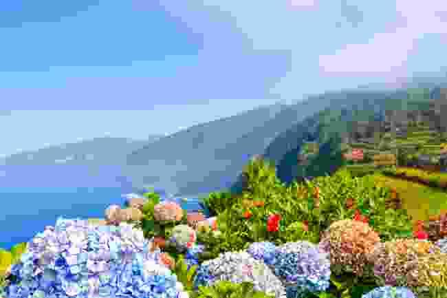 The beautiful northern coast of Madeira (Shutterstock)