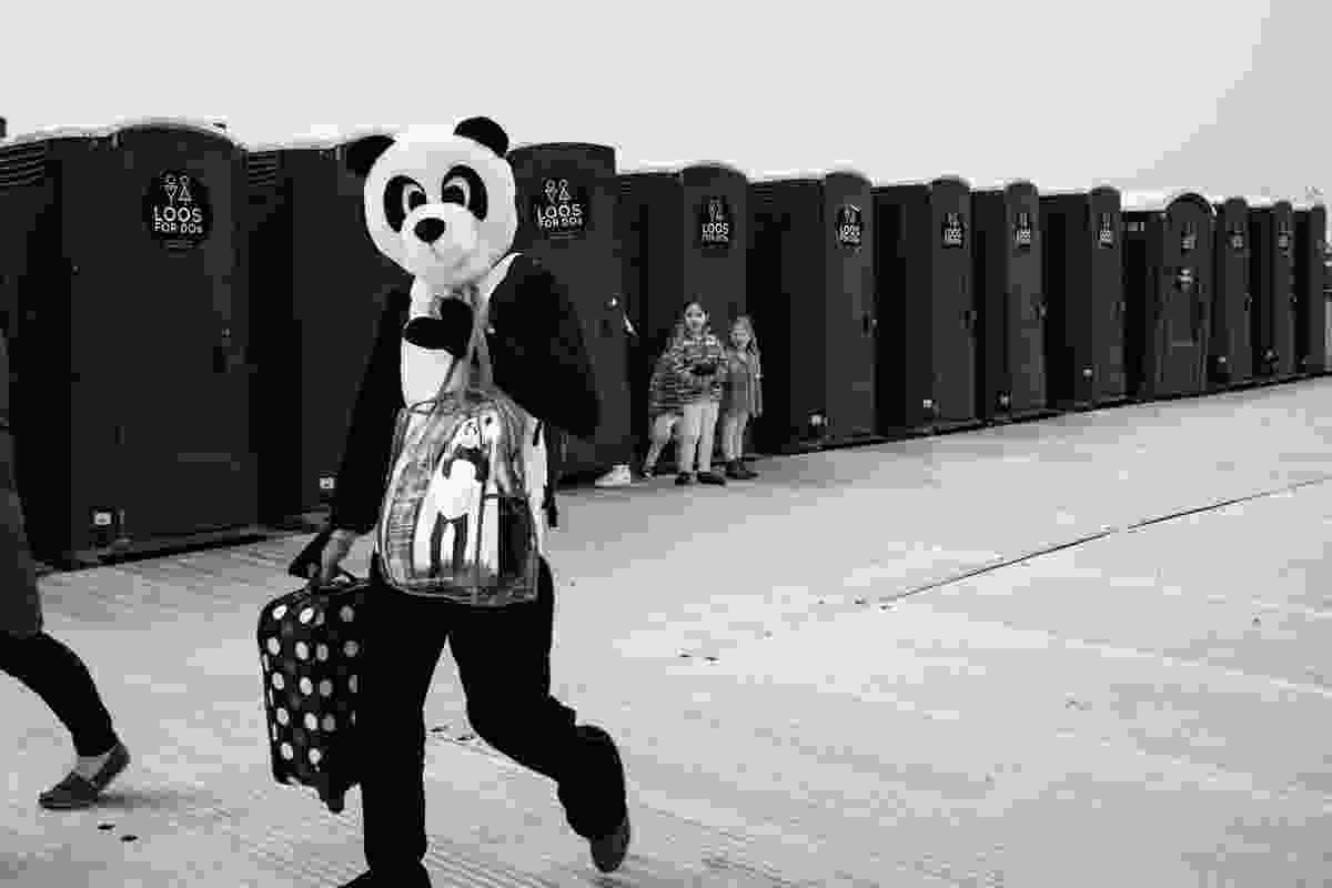 Panda and portaloos, Eastbourne, UK (Derren Brown)