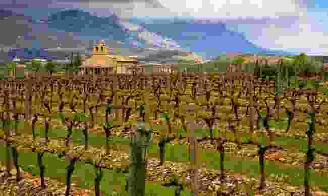 Traditional winery in Rioja (Dreamstime)