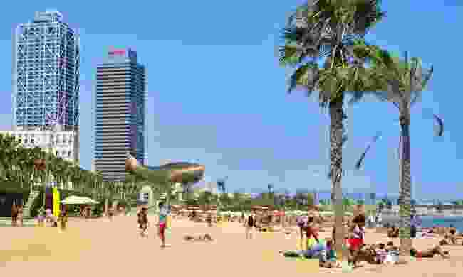 Sunbathers at La Barceloneta Beach (Dreamstime