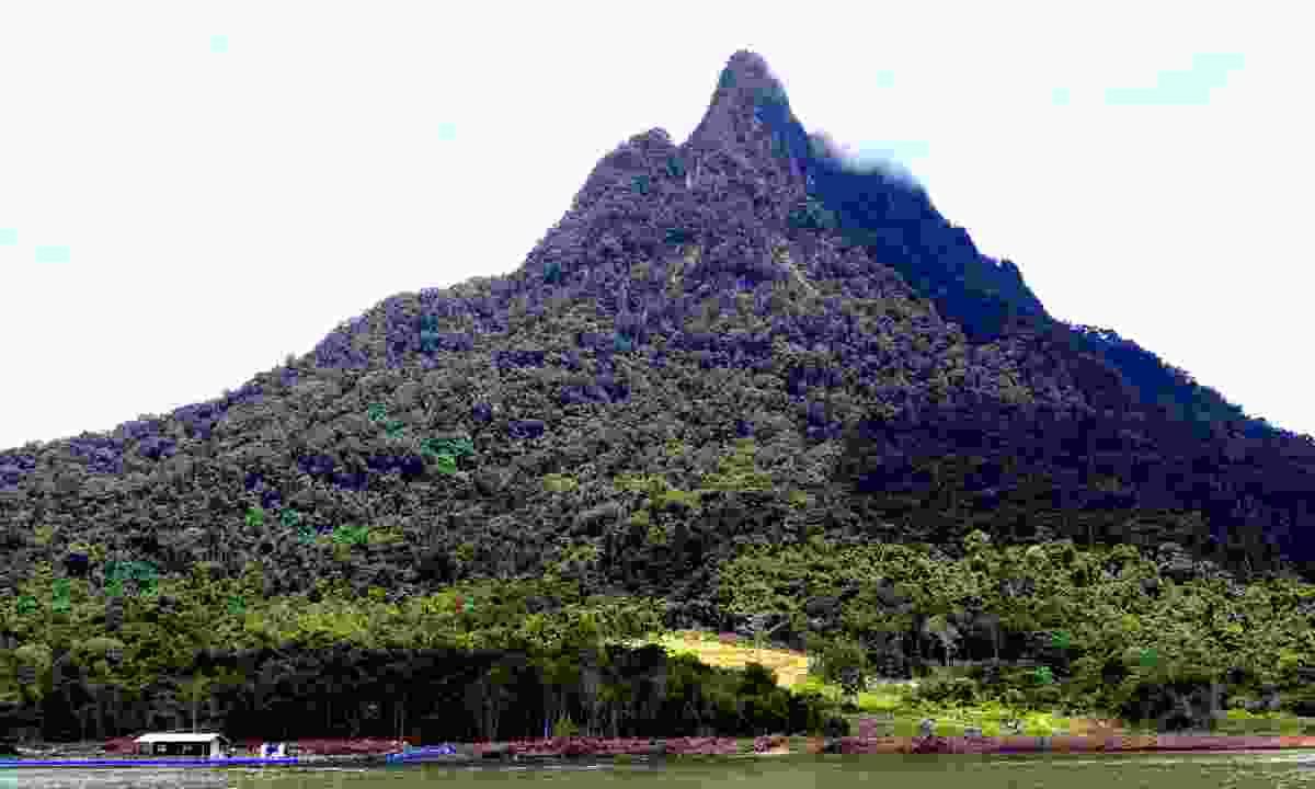 Mt. Santubong in Kuching Wetland National Park (Dreamstime)