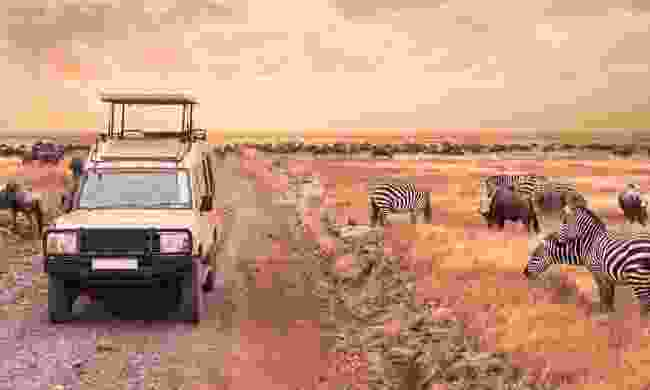 A game drive in the Serengeti (Shutterstock)