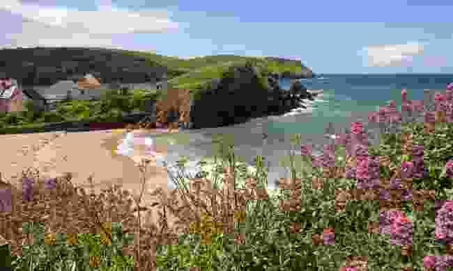 Hope Cove in Devon (Shutterstock)