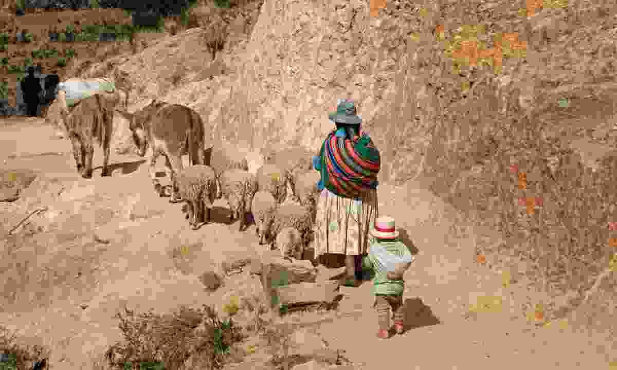 Shepherd family in Bolivia (Shutterstock)