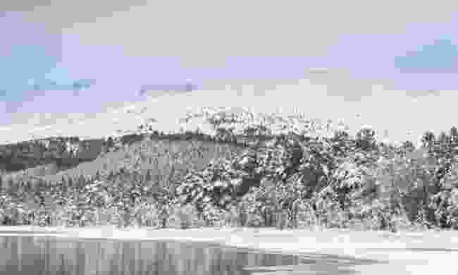 Snow scenes of Loch Morlich, Cairngorms (Dreamstime)