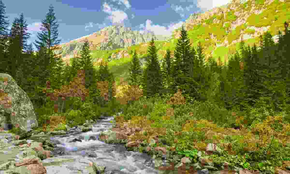 Carpathian Mountains (Dreamstime)