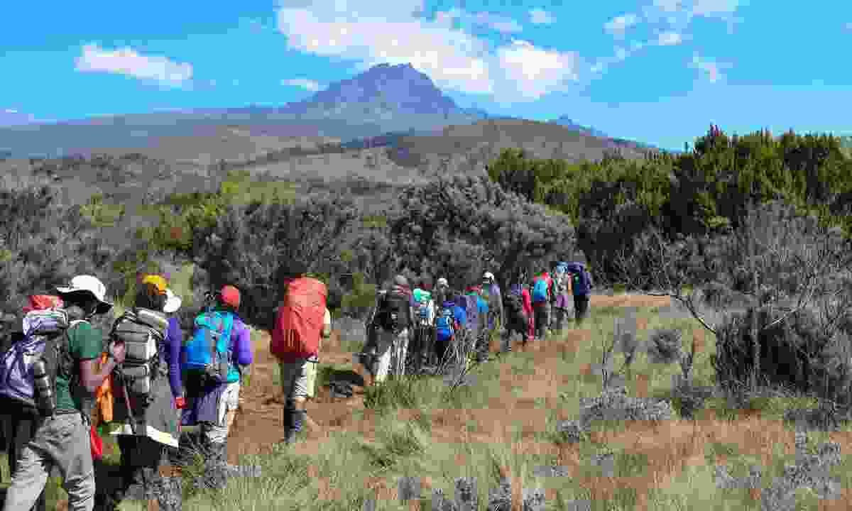 Taking a punt on people you don't know: A group climbing Kilimanjaro (Dreamstime)