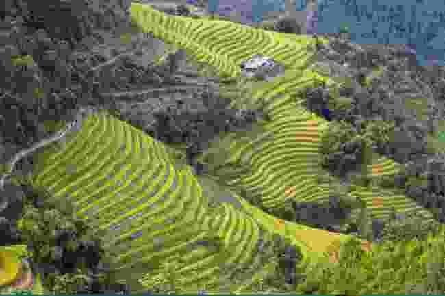 Ha Giang (Shutterstock)