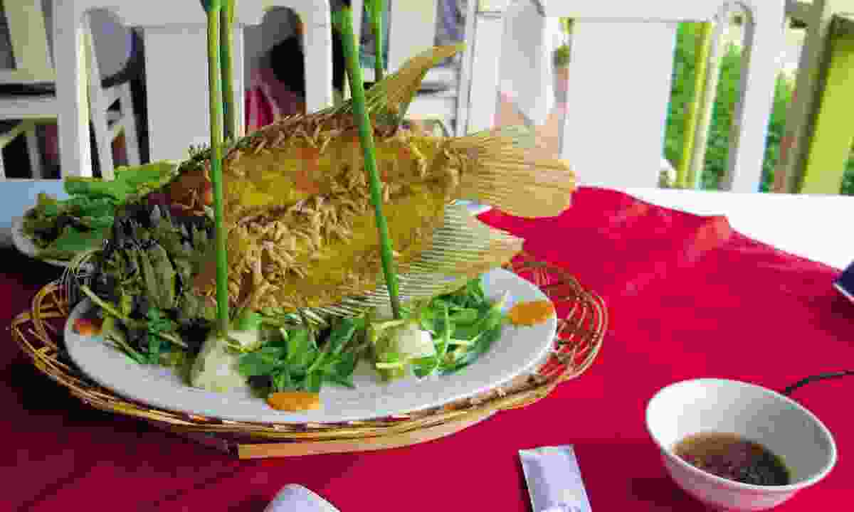Fresh fish is served in Vietnam (Bamboo Travel)