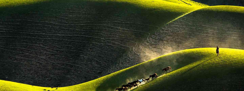 Tekes landscape with horses (Gunther Riehle)
