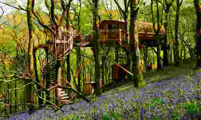 The Living Room Treehouses, Powys, Wales (Canopy & Stars)