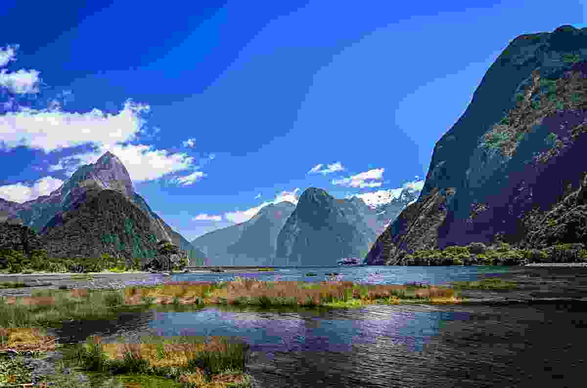 Fiordland, New Zealand. (Shutterstock)