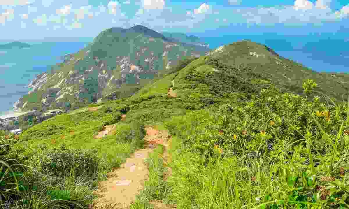 The aptly-named Dragon's Back is one of the best hikes in Hong Kong (Shutterstock)