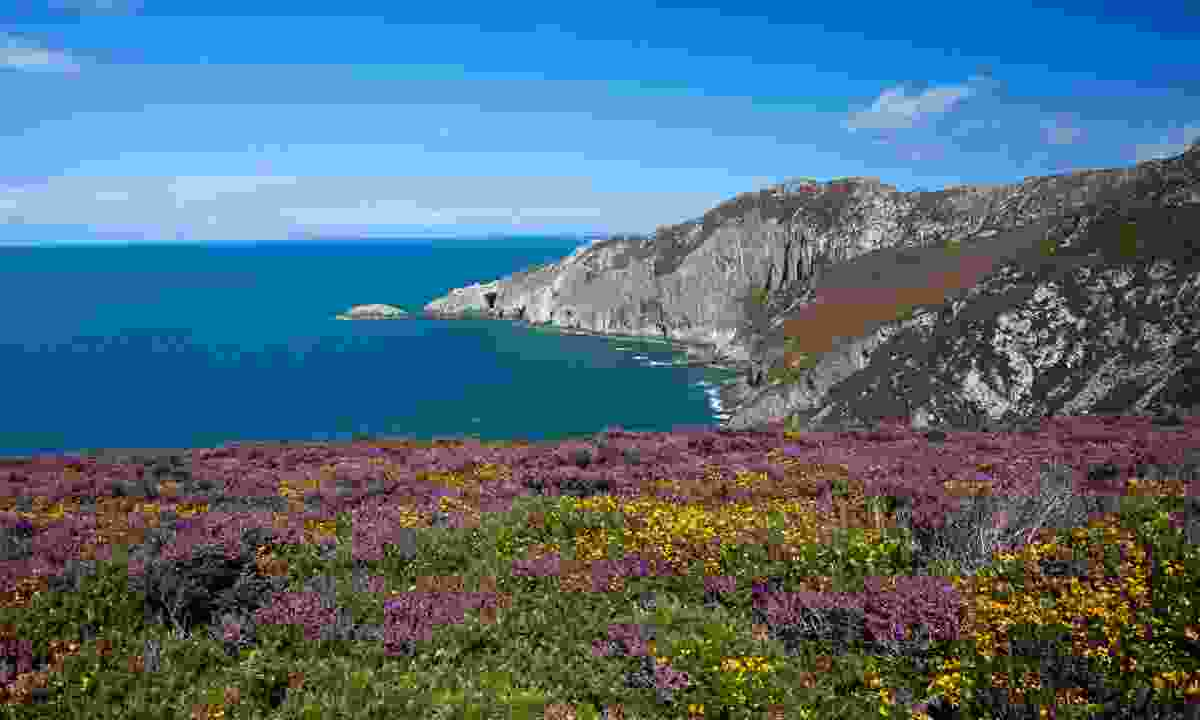 The view from Holyhead Mountain (Shutterstock)