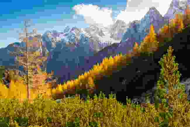Triglav National Park's rocky mountains (Shutterstock)