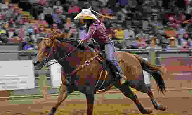 Fort Worth is famous for its world-enticing rodeos (Visit Fort Worth)