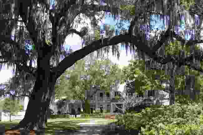 Leu Gardens, Florida (Shutterstock)