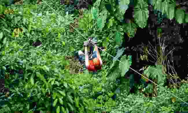 Zip-lining through the rainforest (Lyn Hughes)