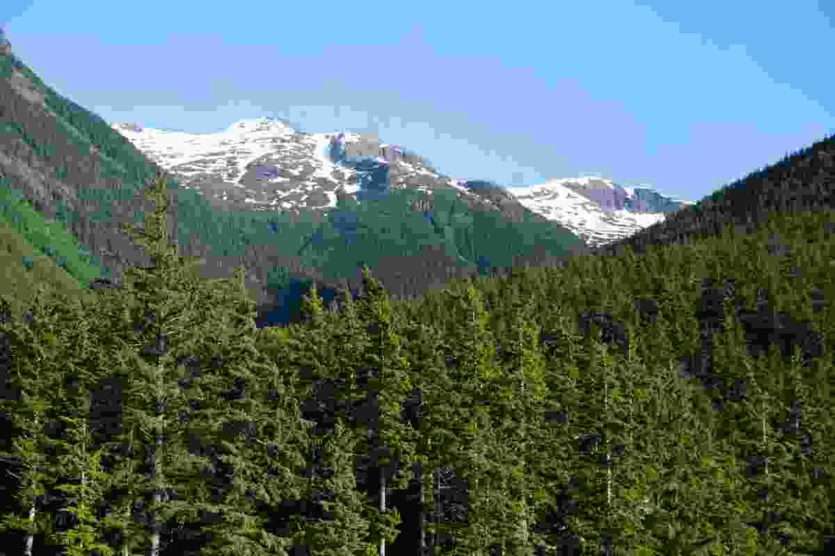 Bella Coola Valley in British Columbia, Canada (Shutterstock)