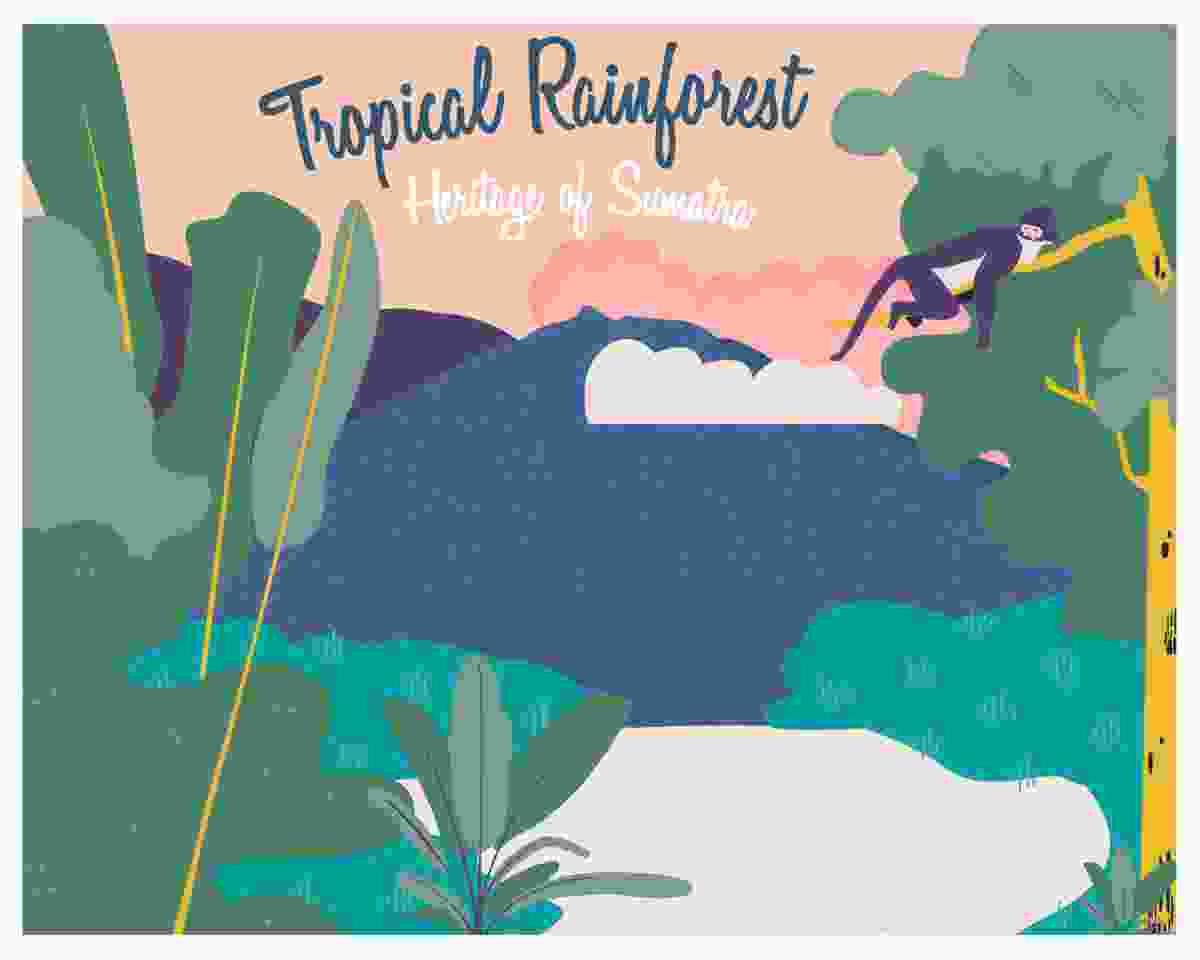 Tropical rainforest heritage of Sumatra, Indonesia (gocomparetravel.com)