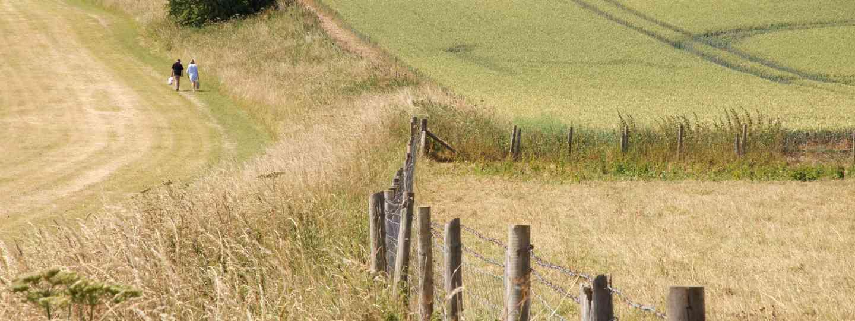 Walking near Avesbury (Nick Smith/greatwestway.co.uk)