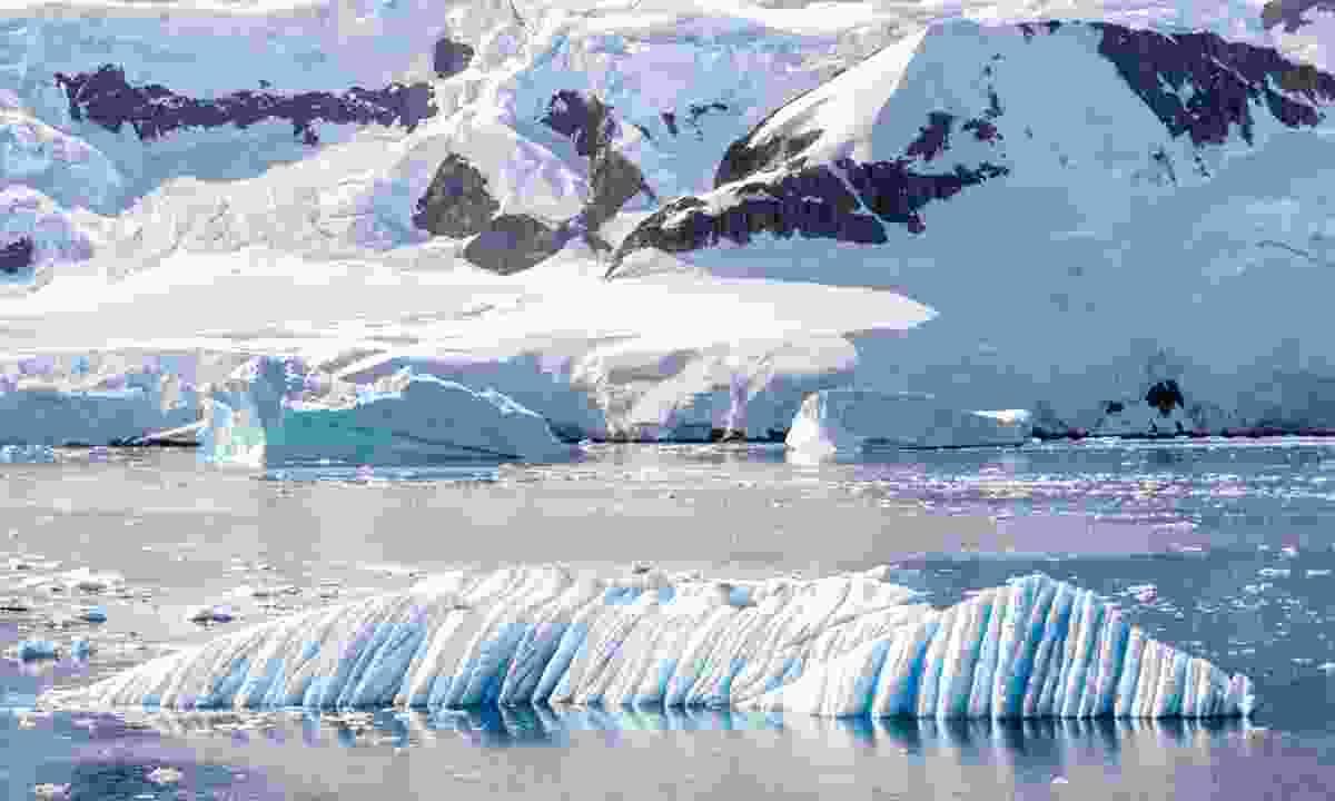 Iceberg near Neko Harbour (Dreamstime)