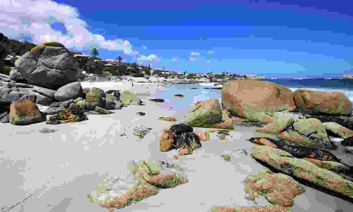 Clifton Beach in Cape Town (Dreamstime)