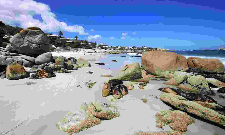 Clifton Beach in Cape Town (Dreamstime)