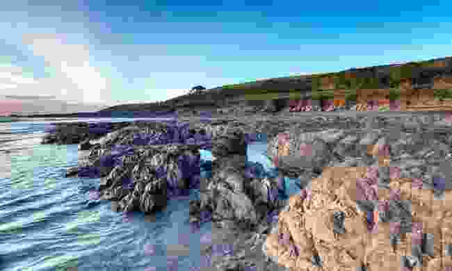 The rugged beach at Wembury in Devon (Dreamstime)