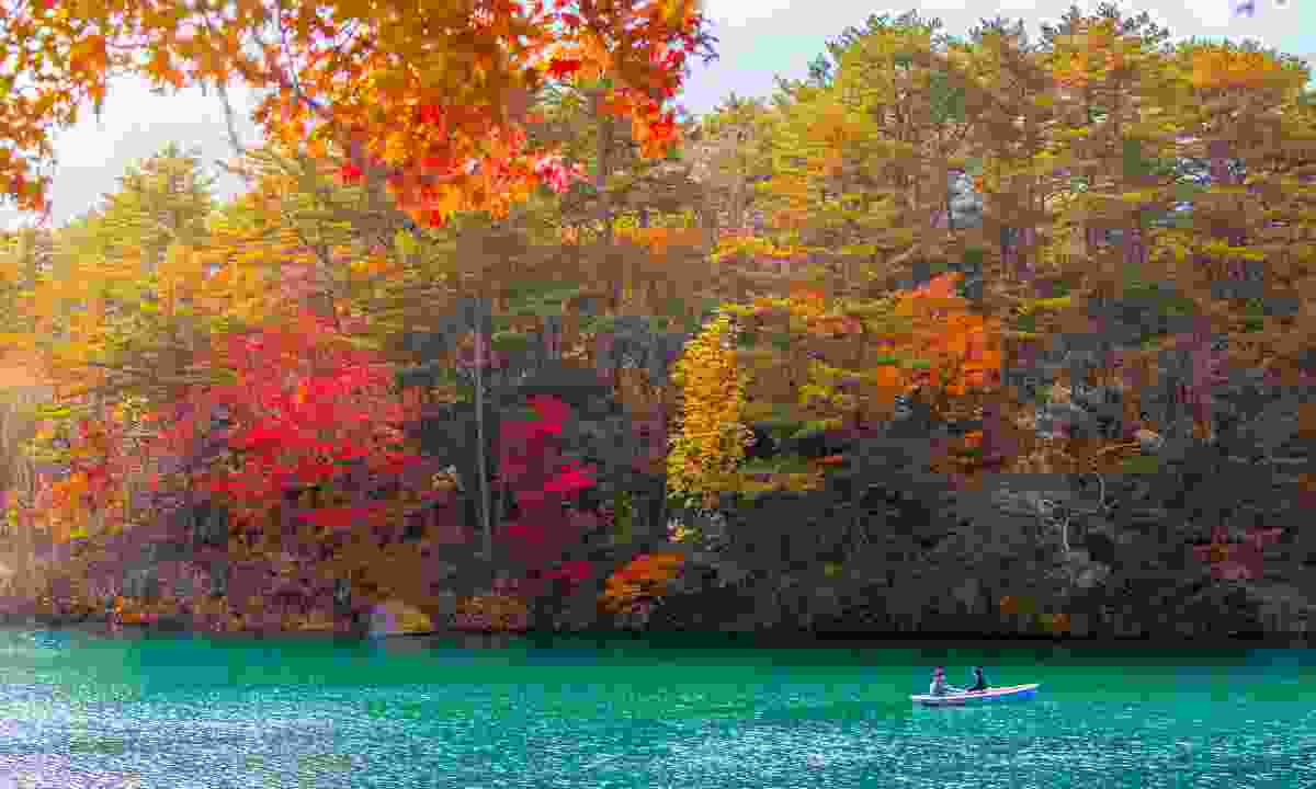 Autumn Leaves in Goshikinuma Lake, Fukushima, Japan (Dreamstime)