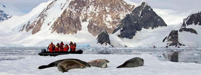 Spot Antarctic wildlife by boat (Dreamstime)