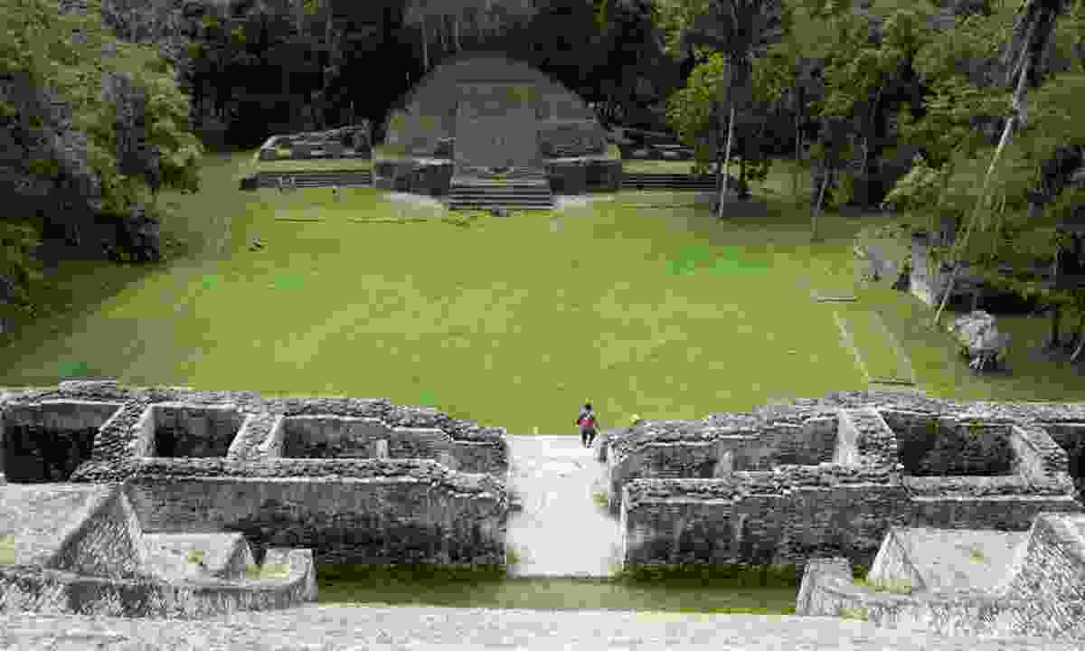 View from the top of Caracol (Simon Chubb)