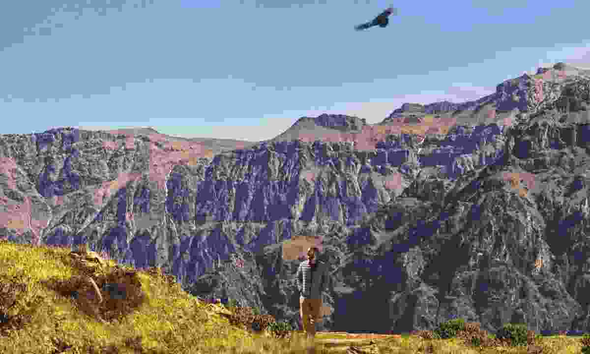 Colca Canyon (Promperù)