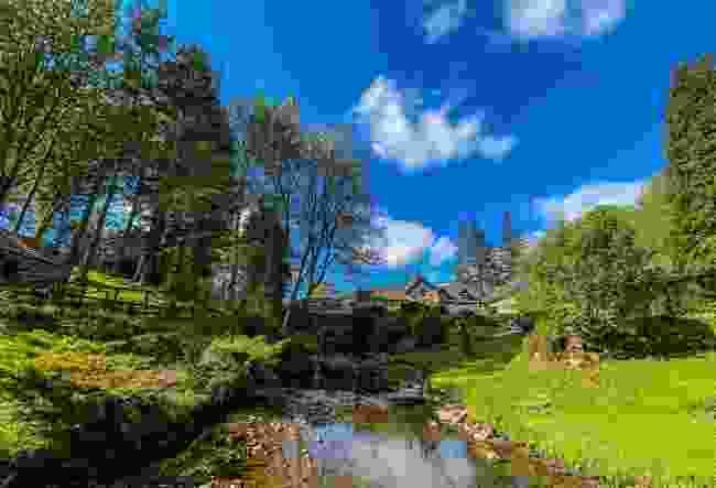 Explore the Roman Vindolanda