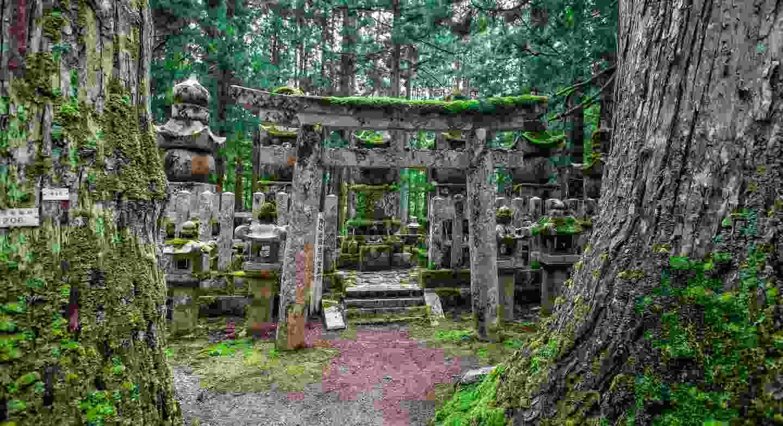 Okunoin Cemetery, Koyasan, Japan (Shutterstock)