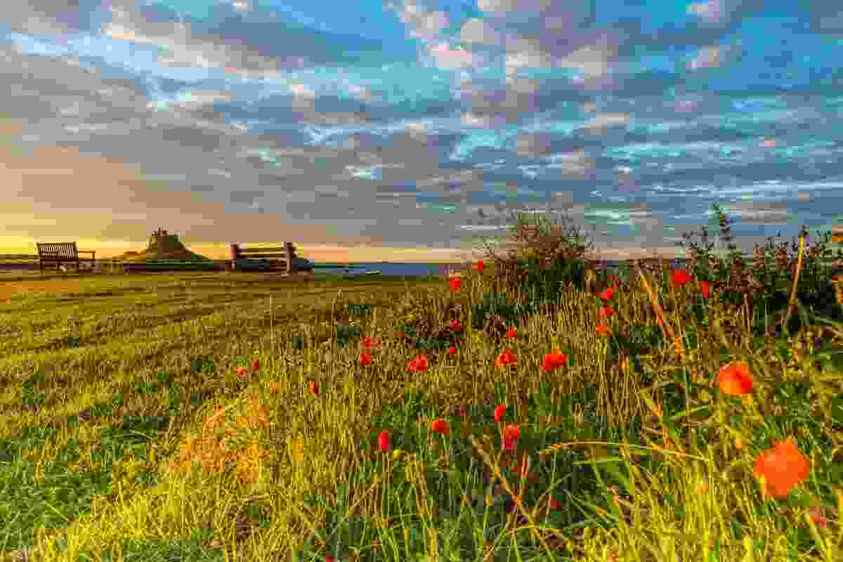 Colourful landscapes on Lindisfarne (Chris Orange)