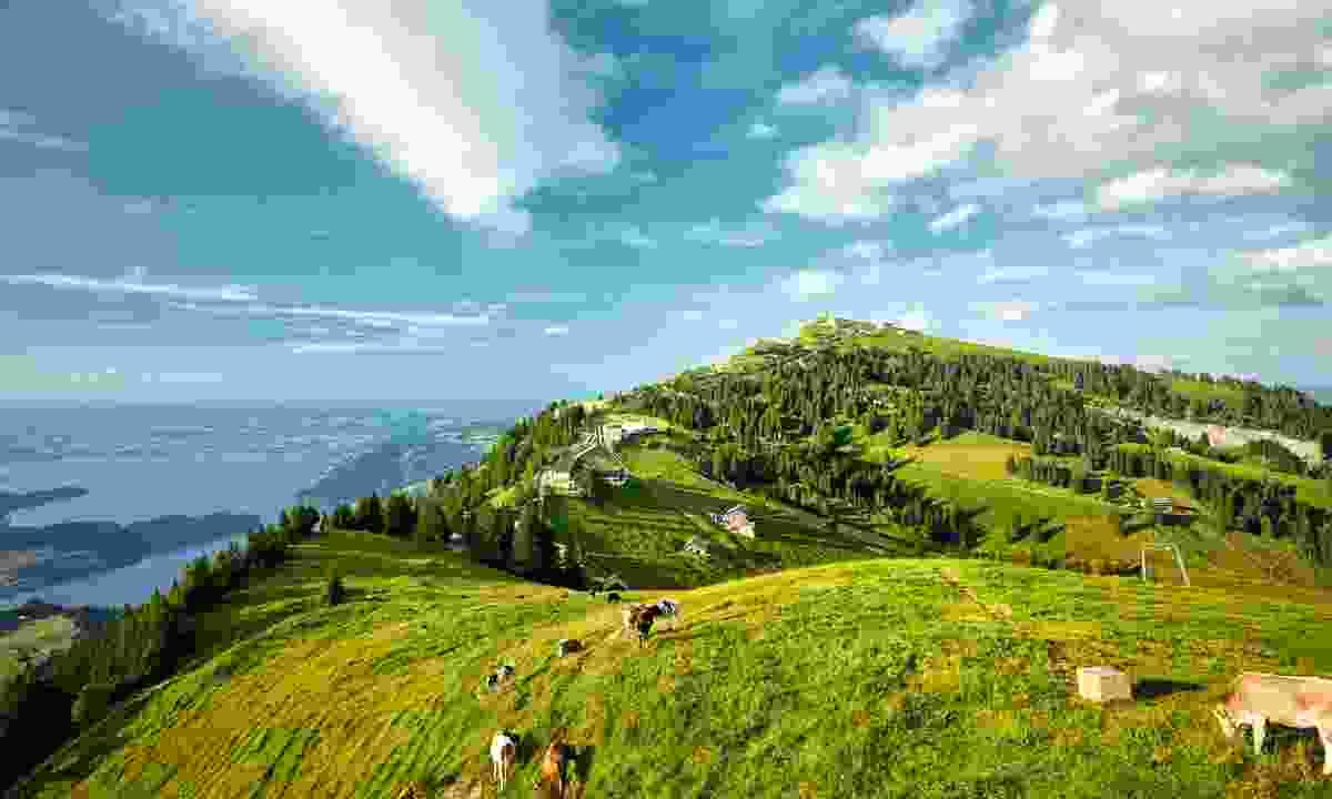 Mount Rigi, looming 1,797m over Lake Lucerne (Lucerne Tourism Board)