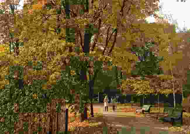 An autumn walk through Mariinsky Park, Kiev (Elizabeth Atkin)