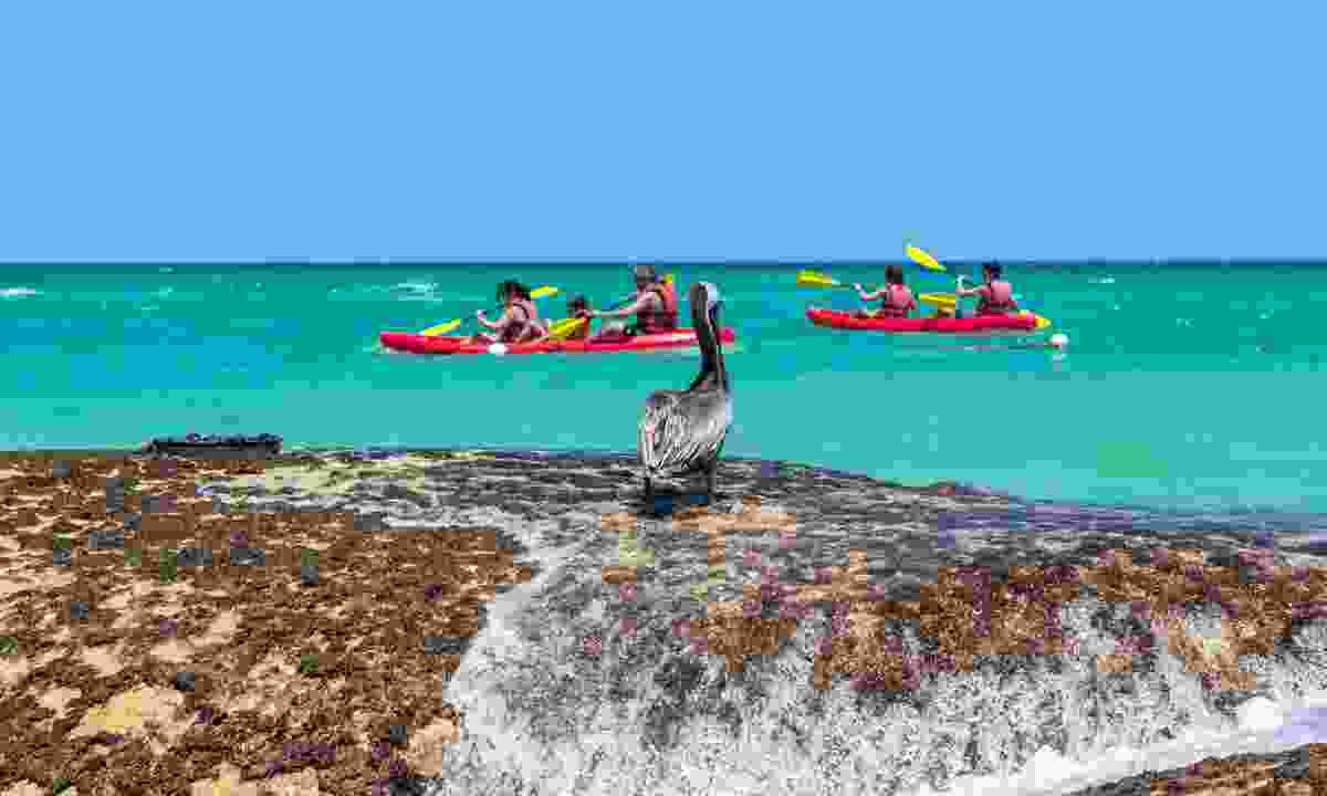 See the Dominican Republic from a kayak (Shutterstock)