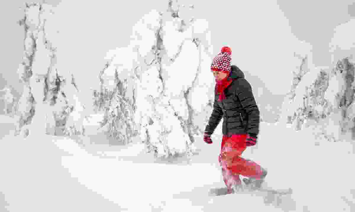 A woman snowshoeing in Lapland, Finland (Dreamstime)