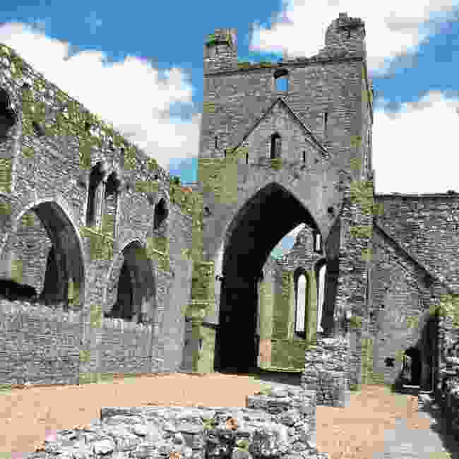 Wexford-Dunbrody Abbey (Derek Cullen)