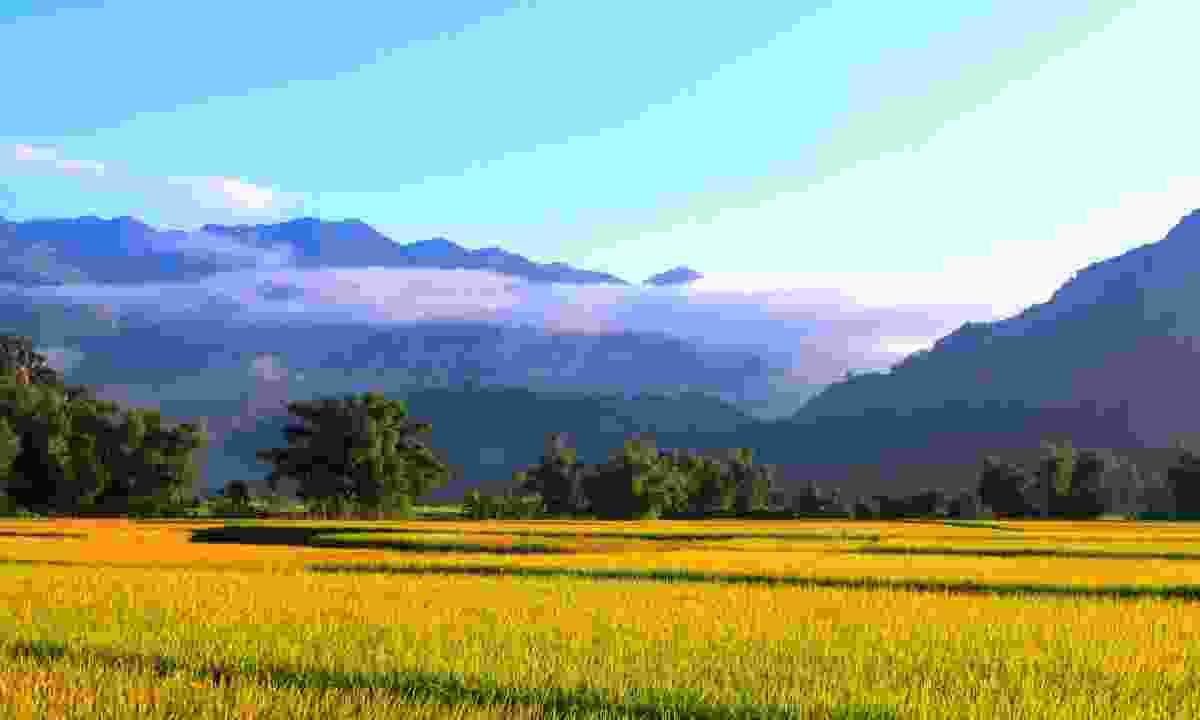 Morning breaks in the Mai Chau Valley (Dreamstime)