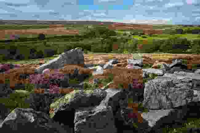 North York Moors National Park in summer (Shutterstock)