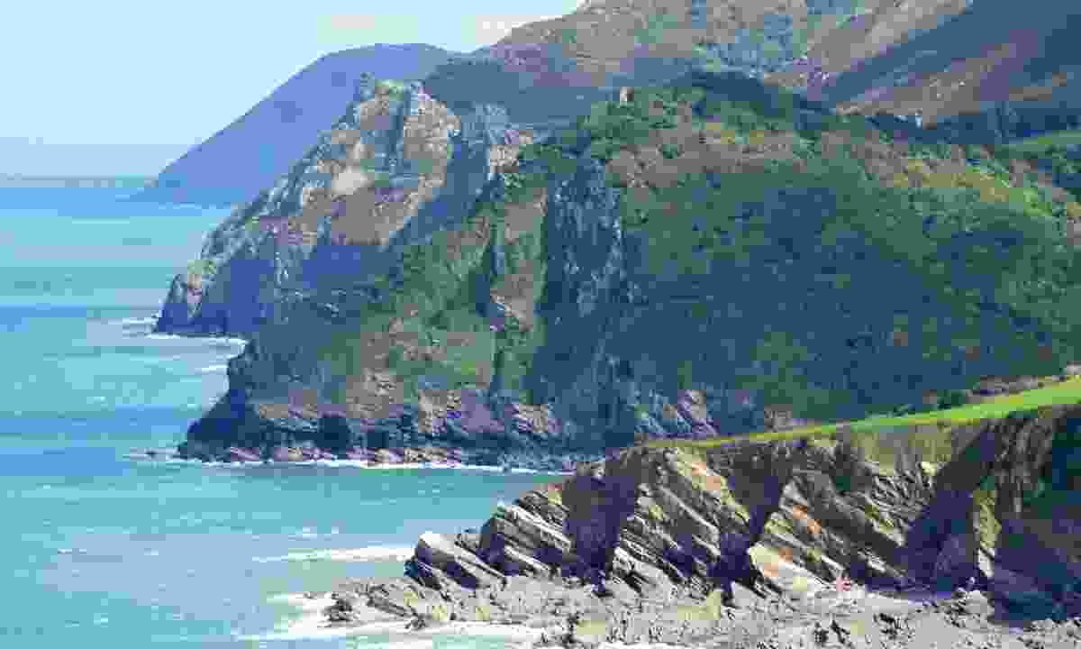Woody Bay (Dreamstime)